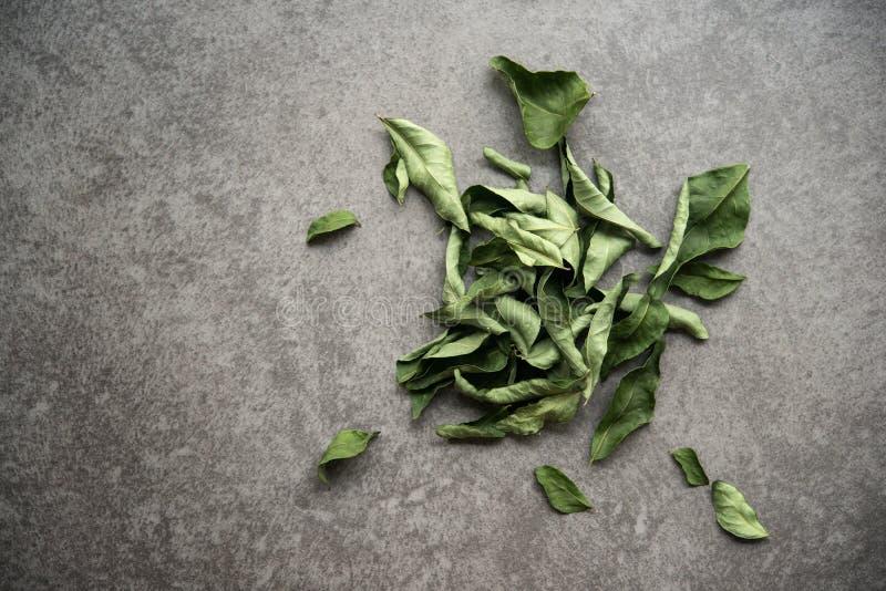 Ξηρά φύλλα κάρρυ στοκ φωτογραφία με δικαίωμα ελεύθερης χρήσης