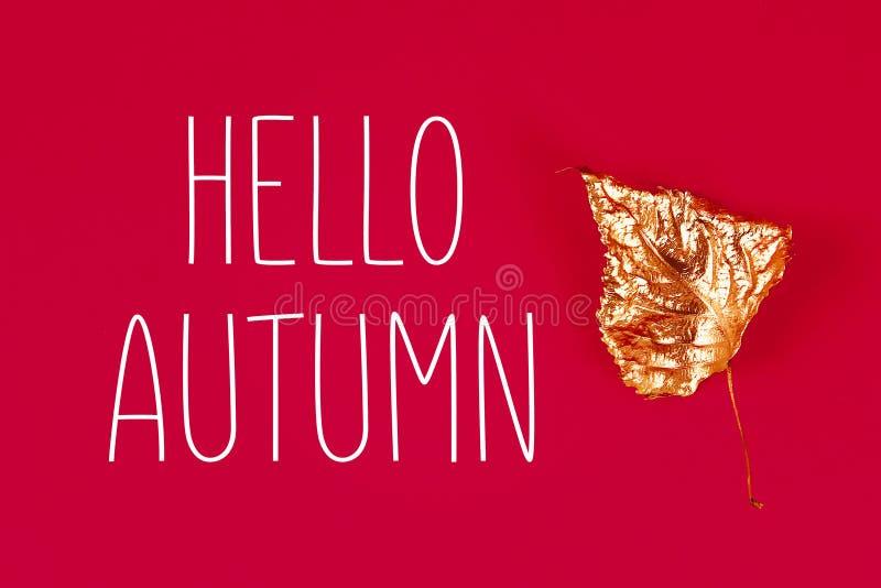 Ξηρά φύλλα φθινοπώρου που χρωματίζονται με το χρυσό χρώμα στο κόκκινο υπόβαθρο r trendy Χρυσό φθινόπωρο στοκ εικόνα