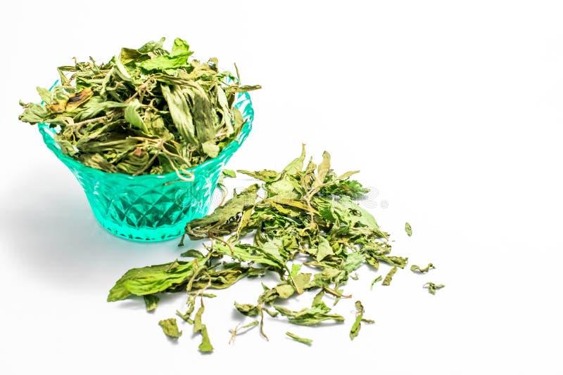 Ξηρά φύλλα stevia στοκ φωτογραφίες