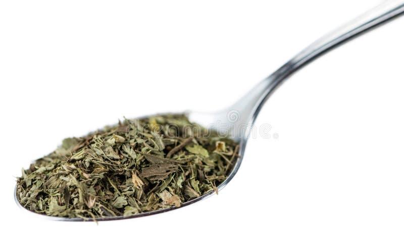 Ξηρά φύλλα Stevia που απομονώνονται στο λευκό στοκ φωτογραφίες