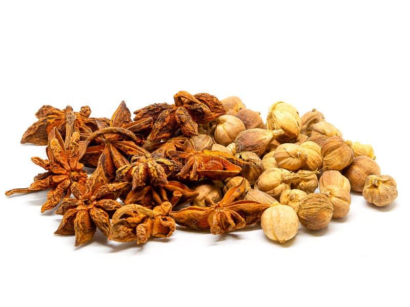 Ξηρά χορτάρια, καρδάμωμο του Σιάμ, φρούτα καρυκευμάτων γλυκάνισου αστεριών και σπόροι στοκ εικόνες