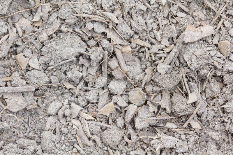 Download Ξηρά χώμα και φύλλο στοκ εικόνες. εικόνα από σκόνη, αποχής - 62711484