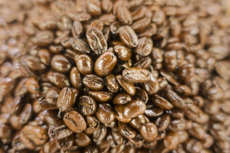 Ξηρά ψημένα φασόλια καφέ Shinny στην αγορά στοκ φωτογραφία