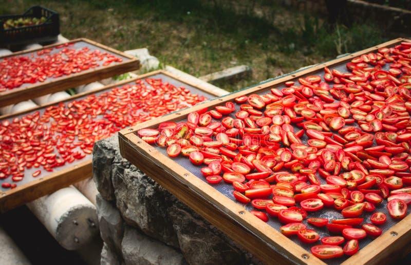 Ξηραμένες από τον ήλιο ντομάτες που ξεραίνουν στον ήλιο στοκ εικόνες
