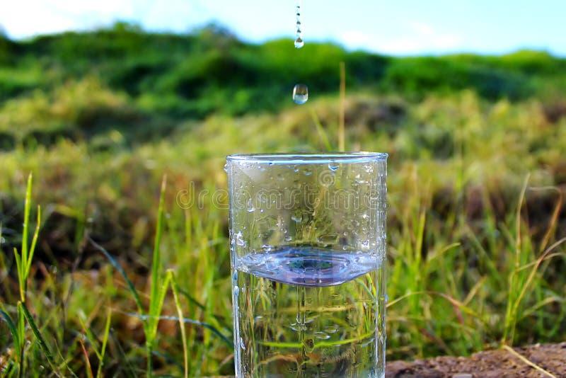 Ξηρασία, έλλειψη νερού, σχεδόν καμία βροχή Κιτρινισμένος τομέας, που ποτίζει τους τομείς με το πόσιμο νερό στοκ εικόνα με δικαίωμα ελεύθερης χρήσης