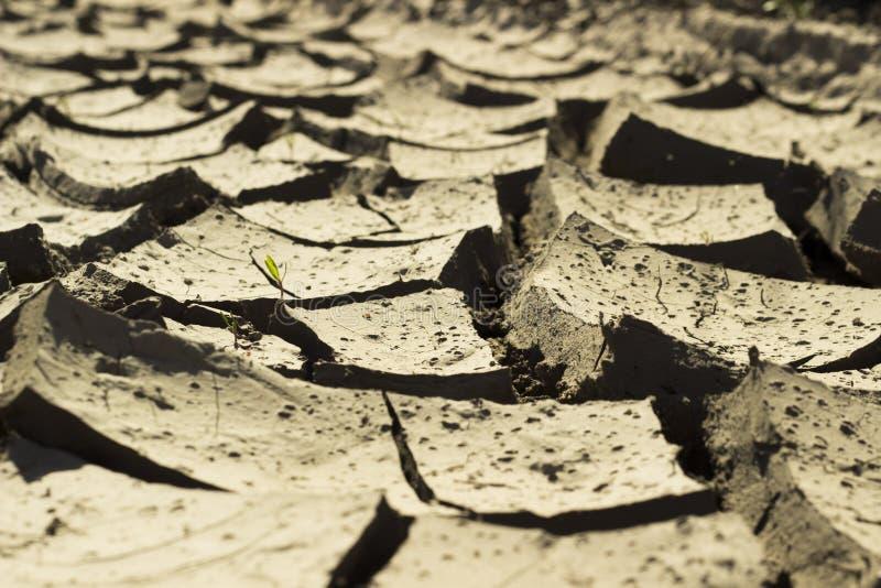 Ξηρασία στην έρημο - όμορφες ρωγμές στη γη στοκ εικόνες