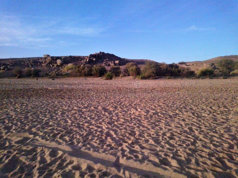 Ξηρασία του rive στην έρημο στοκ εικόνα