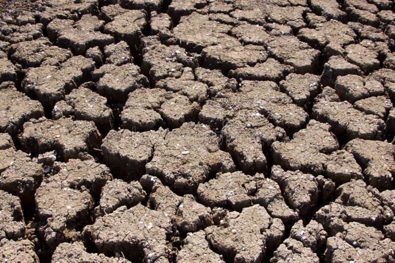 ξηρασία στοκ εικόνα με δικαίωμα ελεύθερης χρήσης