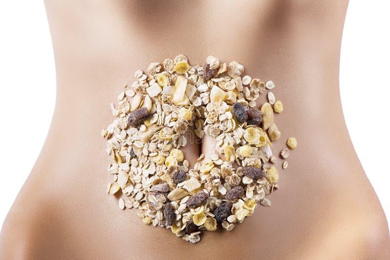 ξηροί καρποί σύνθεσης δημητριακών κοιλιών στοκ εικόνες