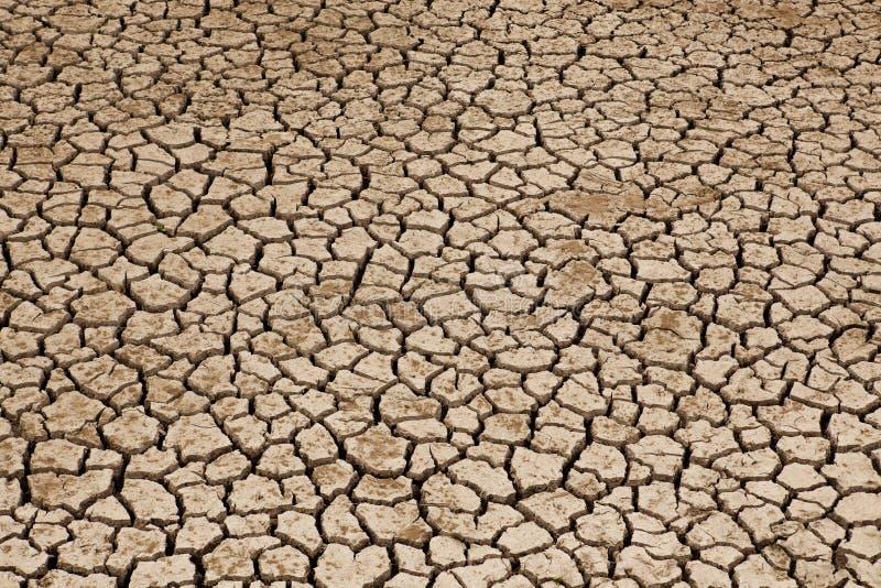 Ξηρό έδαφος που πάσχει από την ξηρασία στοκ φωτογραφίες με δικαίωμα ελεύθερης χρήσης