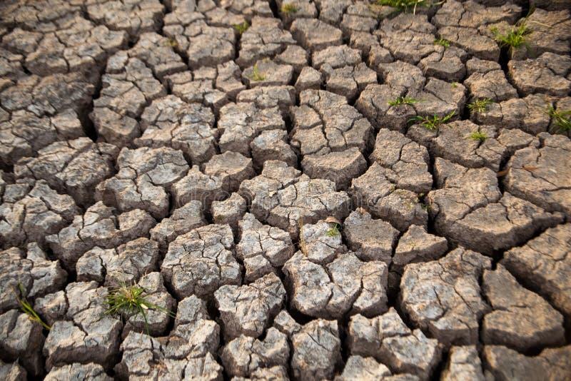 Ξηρό έδαφος. στοκ φωτογραφία με δικαίωμα ελεύθερης χρήσης