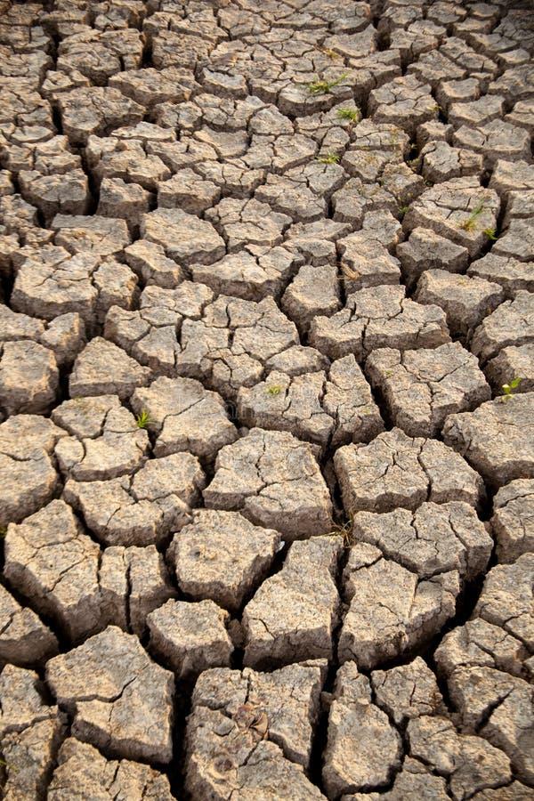 Ξηρό έδαφος. στοκ εικόνες με δικαίωμα ελεύθερης χρήσης
