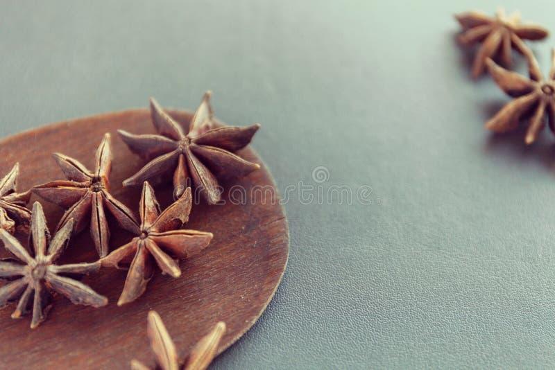 Ξηρό γλυκάνισο αστεριών καφετί ξύλινο spatula Φυσικά καρυκεύματα και καρυκεύματα τροφίμων Νόστιμη κατανάλωση E στοκ φωτογραφία με δικαίωμα ελεύθερης χρήσης