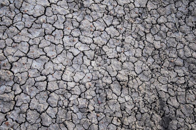 Ξηρό εδαφολογικό αφηρημένο υπόβαθρο ξηρασία Γκρίζο ξηρό χώμα Εδαφολογική ανασκόπηση ραγισμένο ανασκόπηση χώμα Γήινο σχέδιο Εδαφολ στοκ φωτογραφίες