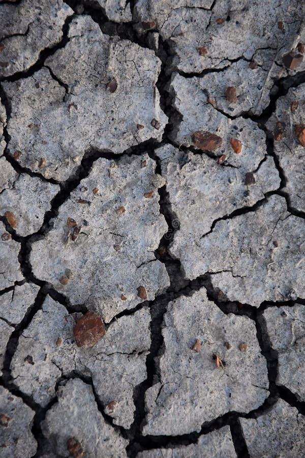 Ξηρό εδαφολογικό αφηρημένο υπόβαθρο ξηρασία Γκρίζο ξηρό χώμα Εδαφολογική ανασκόπηση ραγισμένο ανασκόπηση χώμα Γήινο σχέδιο Εδαφολ στοκ φωτογραφίες με δικαίωμα ελεύθερης χρήσης