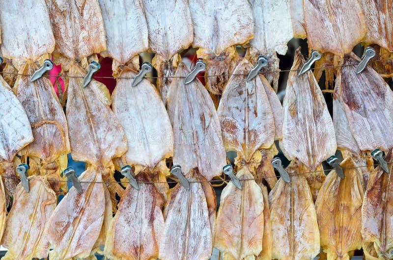 Ξηρό καλαμάρι στην ταϊλανδική τοπική αγορά στοκ εικόνες