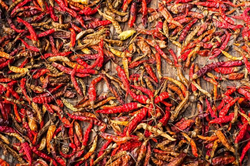 Ξηρό κόκκινο - καυτά πιπέρια τσίλι στην ασιατική αγορά Οργανική τροφή στοκ εικόνες