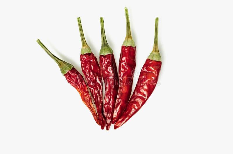 Ξηρό κόκκινο πιπέρι του Cayenne τσίλι ή τσίλι που απομονώνεται στην άσπρη διακοπή υποβάθρου στοκ φωτογραφία με δικαίωμα ελεύθερης χρήσης