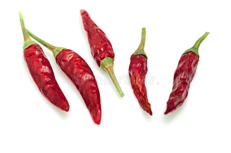 Ξηρό κόκκινο πιπέρι του Cayenne τσίλι ή τσίλι που απομονώνεται στην άσπρη διακοπή υποβάθρου στοκ εικόνες
