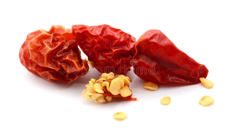 Ξηρό κόκκινο πιπέρι του Cayenne τσίλι ή τσίλι που απομονώνεται στο άσπρο υπόβαθρο στοκ εικόνα με δικαίωμα ελεύθερης χρήσης