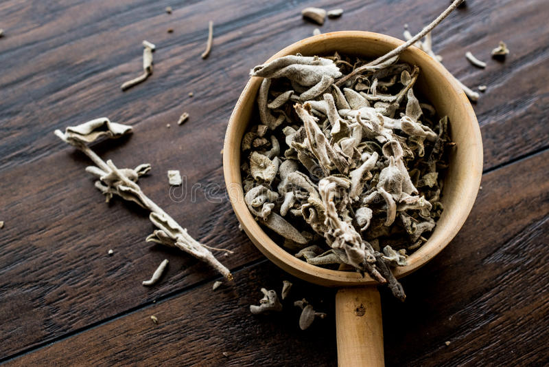 Ξηρό λογικό τσάι στην ξύλινη κουτάλα στοκ φωτογραφίες