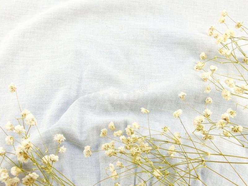 Ξηρό λουλούδι στη σύσταση του υποβάθρου υφάσματος στοκ εικόνα με δικαίωμα ελεύθερης χρήσης
