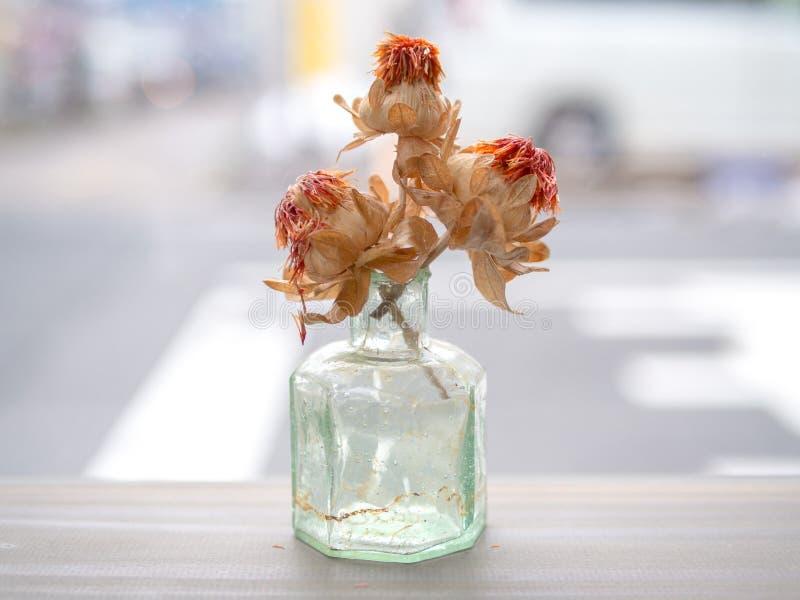 Ξηρό λουλούδι στο γυαλί στοκ εικόνα με δικαίωμα ελεύθερης χρήσης