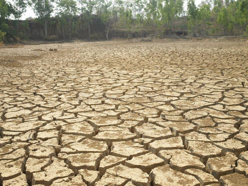 ξηρό πάτωμα στοκ εικόνες με δικαίωμα ελεύθερης χρήσης