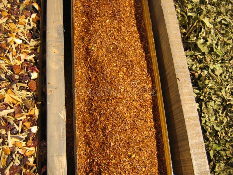 ξηρό τσάι σειρών φύλλων στοκ φωτογραφίες με δικαίωμα ελεύθερης χρήσης