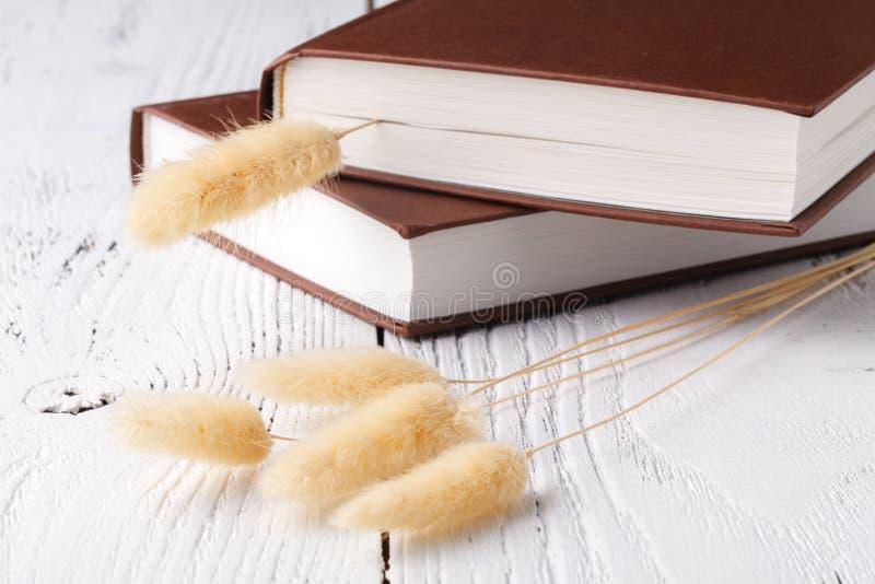 Ξηρό χορτάρι στα βιβλία στοκ εικόνες με δικαίωμα ελεύθερης χρήσης