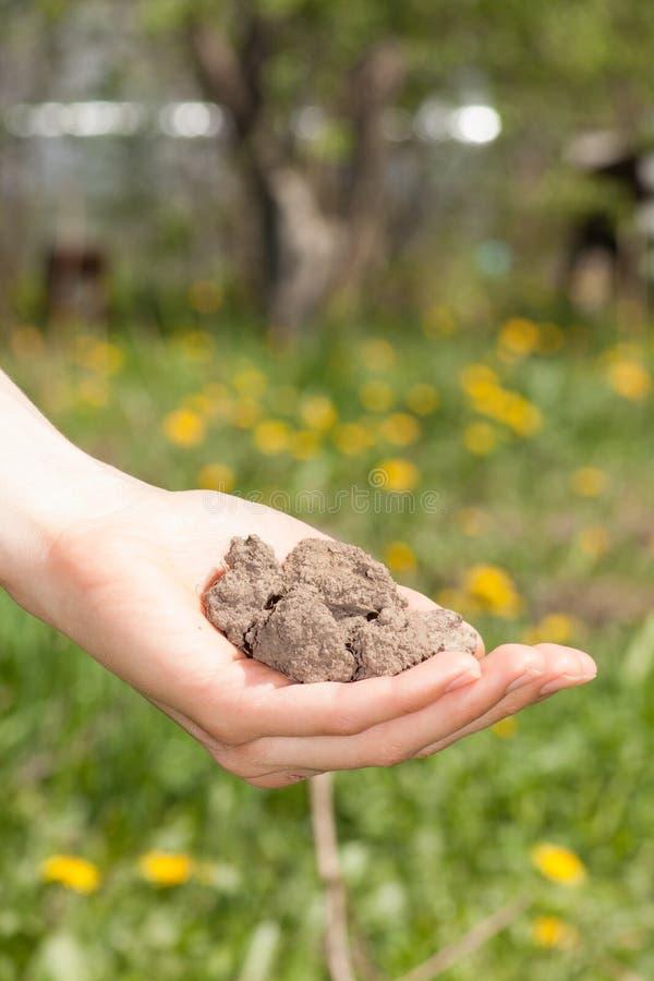 Ξηρό χώμα υπό εξέταση στοκ φωτογραφίες
