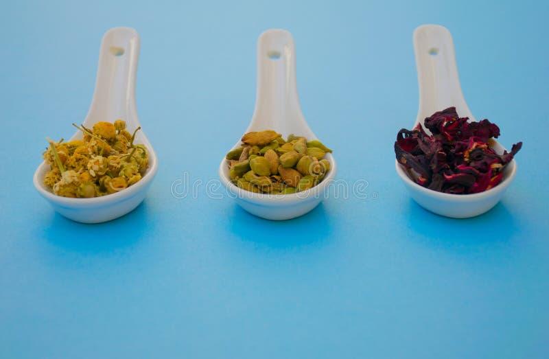 Ξηρό chamomile οφθαλμών σπόρων και hibiscus καρδάμωμων τσάι στοκ φωτογραφία