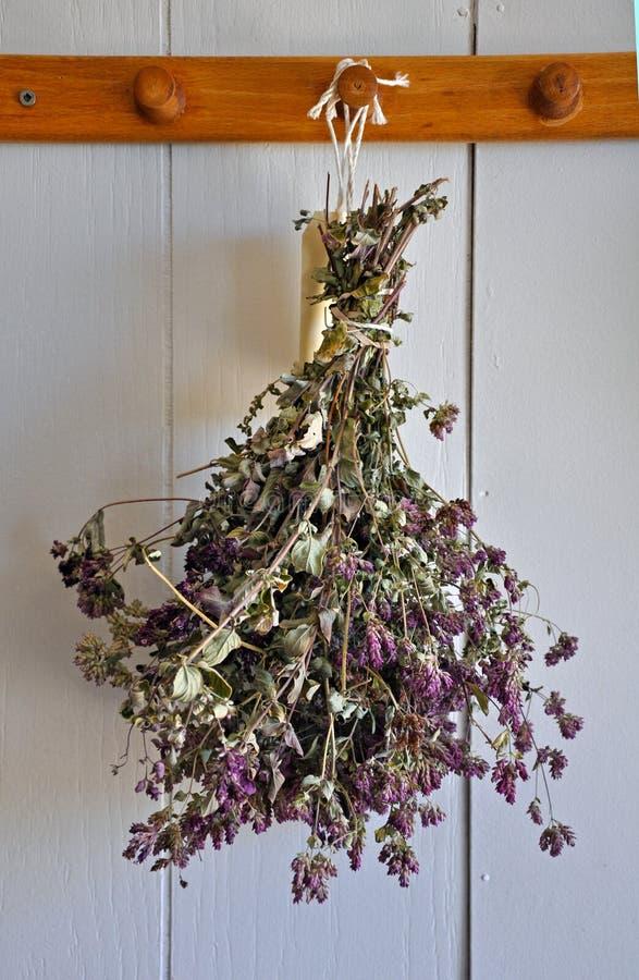 ξηρό lavender λουλουδιών στοκ εικόνες