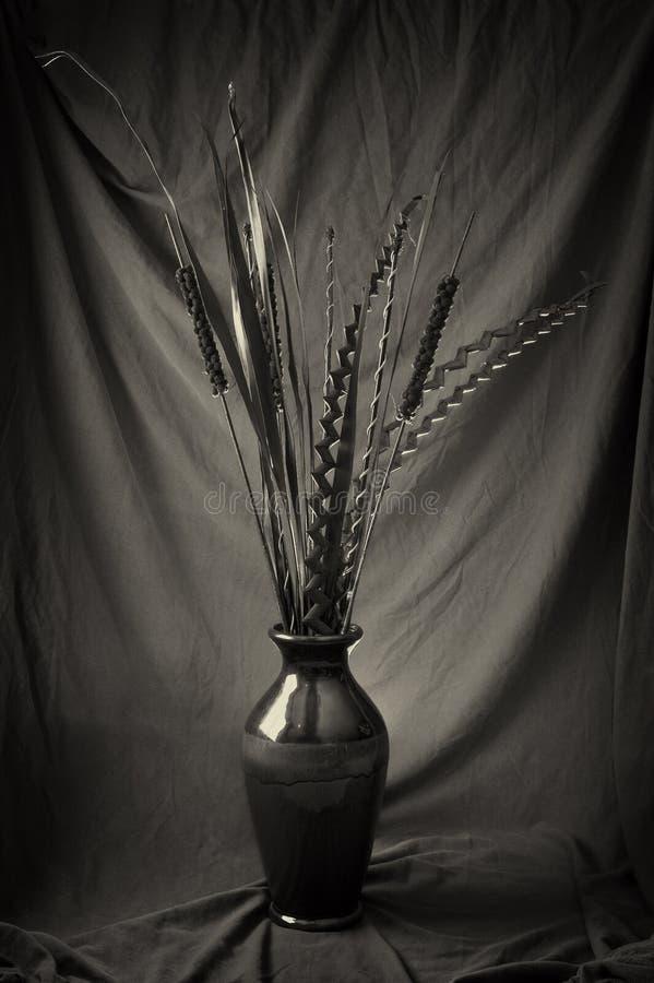 ξηρό vase φυτών στοκ εικόνες
