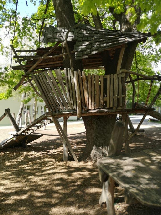 Ξυλοπόδαρο - ξύλινο σπίτι στα στηρίγματα στοκ εικόνα με δικαίωμα ελεύθερης χρήσης
