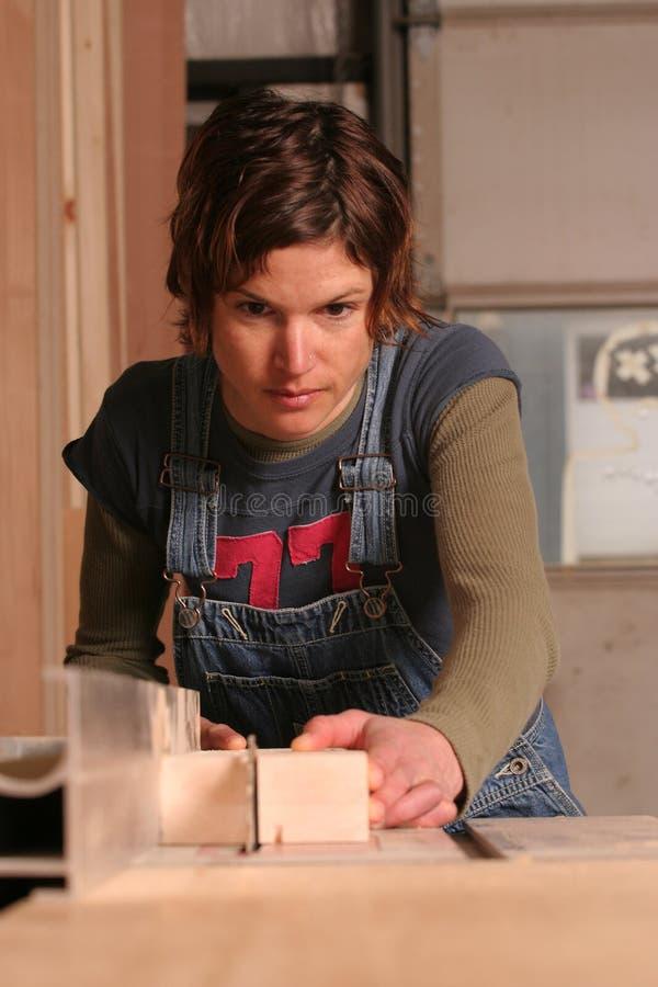 ξυλουργός στοκ εικόνες με δικαίωμα ελεύθερης χρήσης