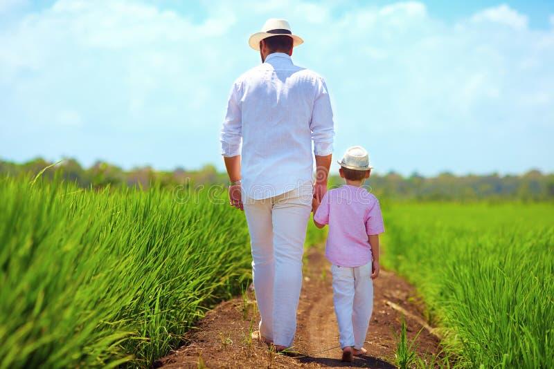 Ξυπόλυτοι πατέρας και γιος που περπατούν μέσω του τομέα ρυζιού στοκ εικόνα
