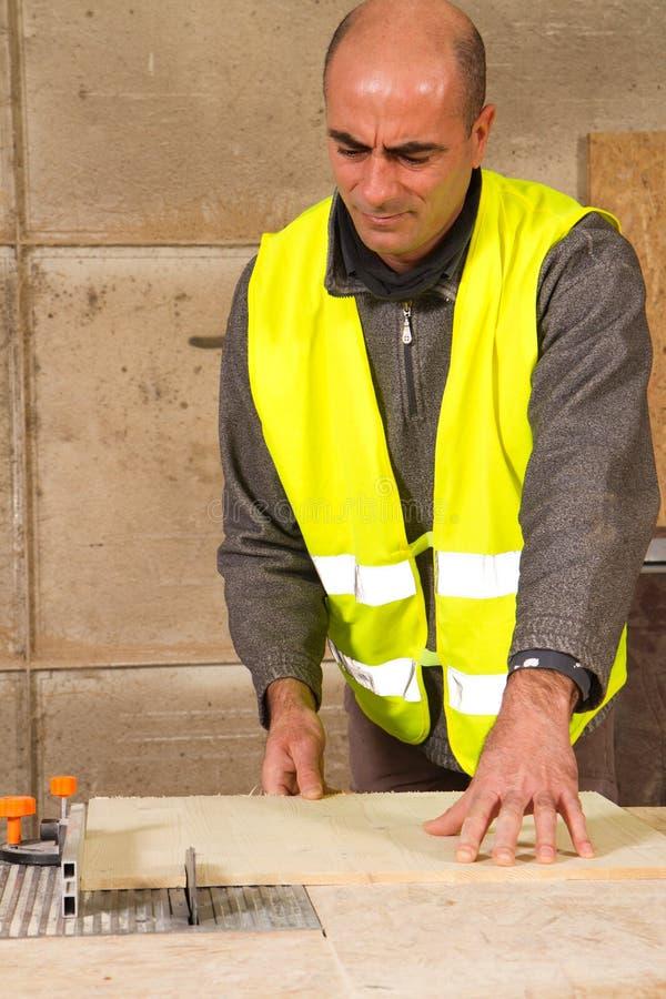 ξυλουργός στοκ εικόνα