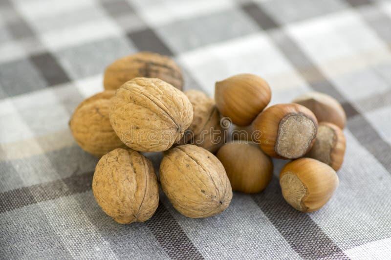Ξύλα καρυδιάς και φουντούκια στα σκληρά κοχύλια, σωρός στο ελεγμένο τραπεζομάντιλο, ένα ξύλο καρυδιάς με το σπασμένο κοχύλι στοκ εικόνες με δικαίωμα ελεύθερης χρήσης