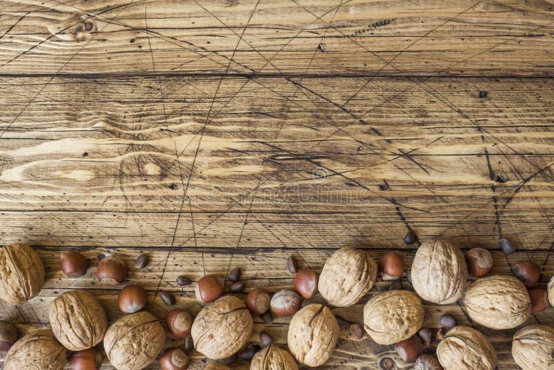 Ξύλα καρυδιάς, φουντούκια και κέδρος σε ένα σκοτεινό υπόβαθρο παλαιού ξύλινου Υγιές διάστημα αντιγράφων διατροφής ξύλων καρυδιάς στοκ εικόνες