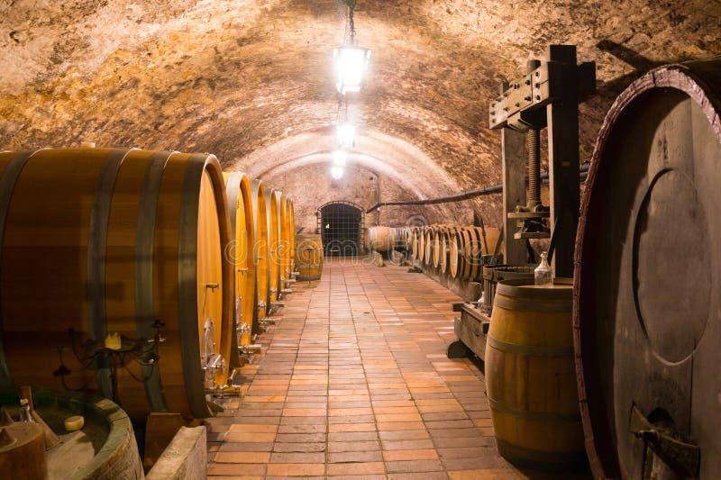 Ξύλινα βαρέλια κρασιού σε ένα υπόγειο κελάρι, Μελένικο στοκ φωτογραφία με δικαίωμα ελεύθερης χρήσης