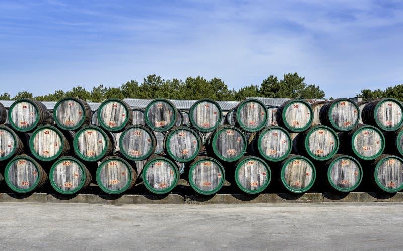 Ξύλινα βαρέλια κρασιού σε υπαίθριο στο ναυπηγείο οινοποιιών στοκ φωτογραφίες