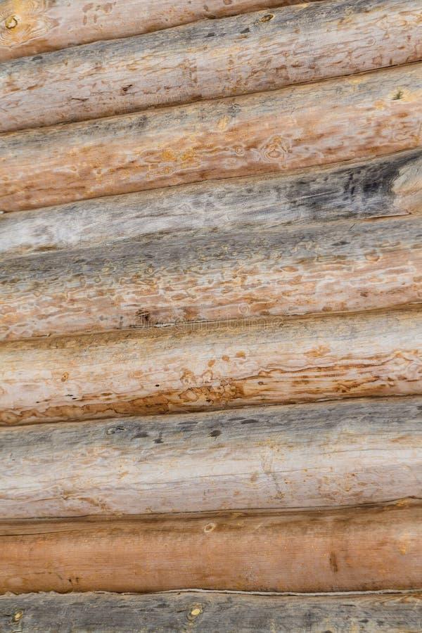 Ξύλινες οριζόντιες γραμμές σχεδίων υποβάθρου κούτσουρων Woodcraft έννοια στοκ εικόνες με δικαίωμα ελεύθερης χρήσης