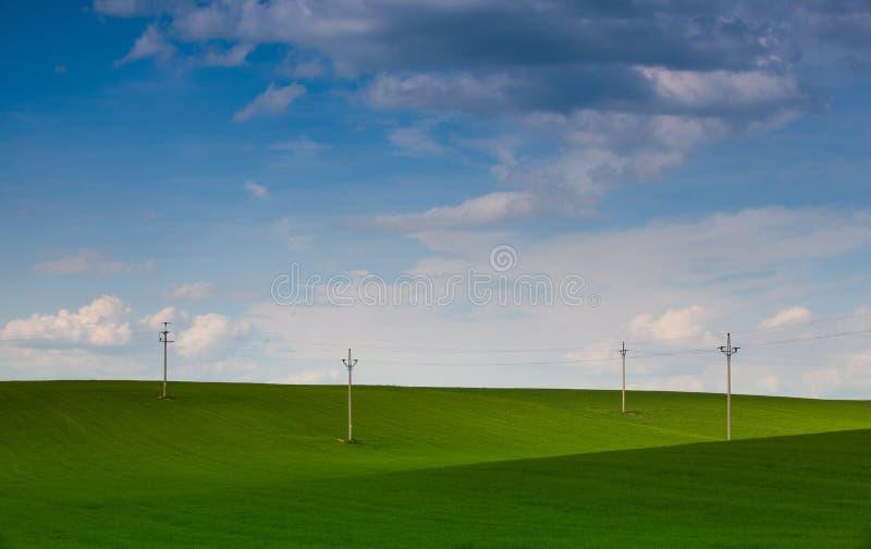 Ξύλινες στήλες των ηλεκτροφόρων καλωδίων στον τομέα στοκ εικόνα