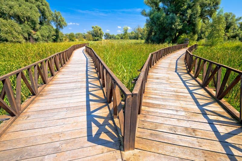 Ξύλινη άποψη θαλασσίων περίπατων πάρκων φύσης ελών Rit Kopacki στοκ εικόνες