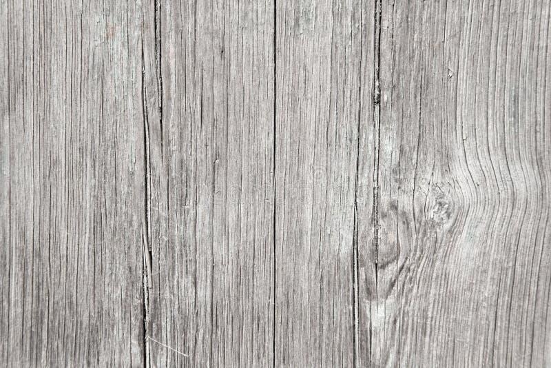 Ξύλινη ανασκόπηση Γκρίζο υπόβαθρο από το φυσικό δέντρο Ξύλινη σύσταση Κενό ξύλινο υπόβαθρο για το σχέδιο, το σχέδιο και τα πρότυπ στοκ φωτογραφία με δικαίωμα ελεύθερης χρήσης