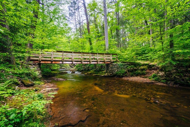 Ξύλινη γέφυρα για πεζούς πέρα από τον κολπίσκο κουζινών, στο κρατικό πάρκο Ricketts Glen, Πενσυλβανία στοκ εικόνα με δικαίωμα ελεύθερης χρήσης
