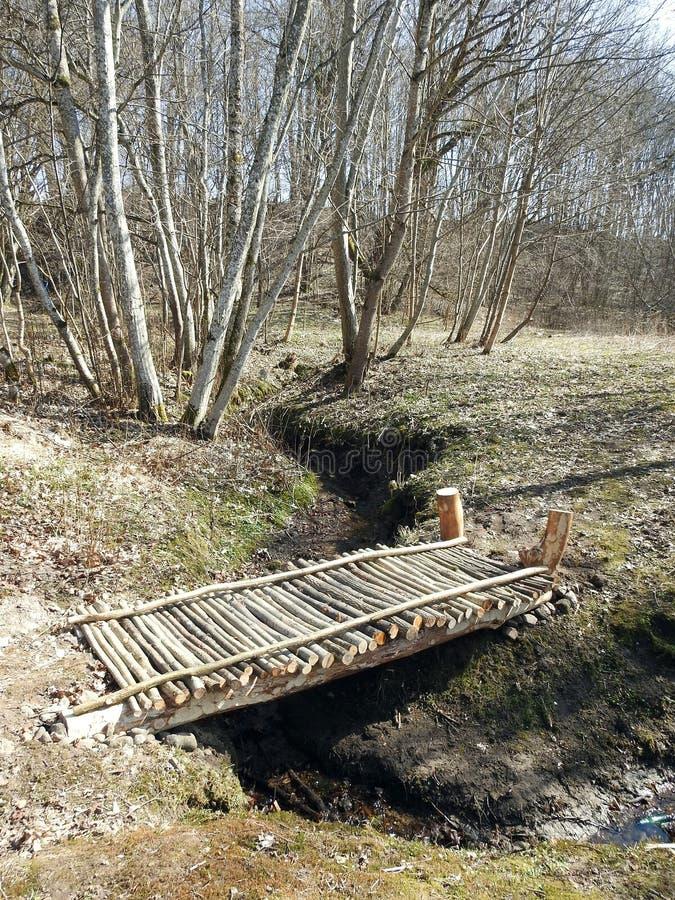 Ξύλινη γέφυρα για πεζούς στο πάρκο, Λιθουανία στοκ φωτογραφίες με δικαίωμα ελεύθερης χρήσης