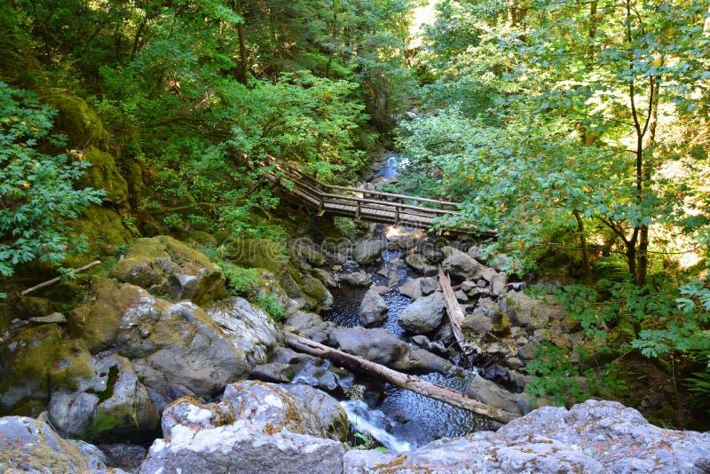 Ξύλινη γέφυρα πέρα από τον κολπίσκο στοκ εικόνες