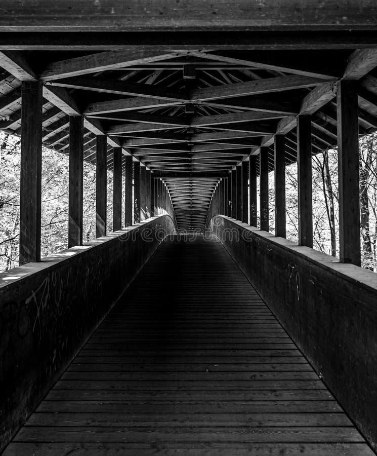 ξύλινη γέφυρα στο δάσος πόλεων της Φρανκφούρτης, hesse, Γερμανία στοκ φωτογραφία με δικαίωμα ελεύθερης χρήσης